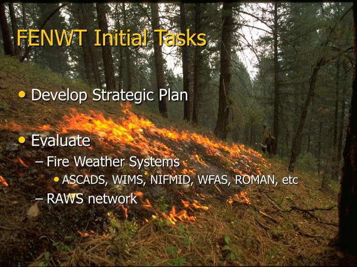 FENWT Initial Tasks