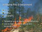 wildland fire environment