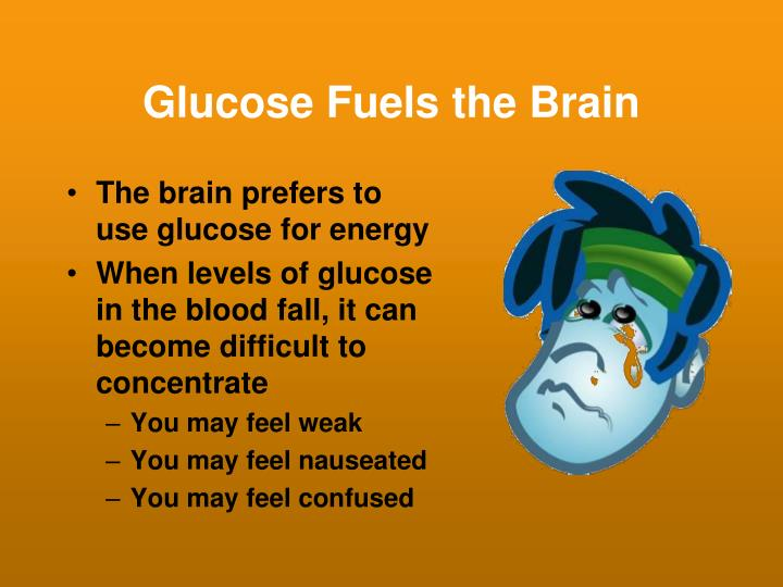 Glucose fuels the brain