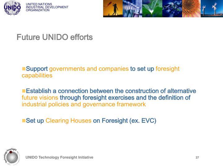 Future UNIDO efforts