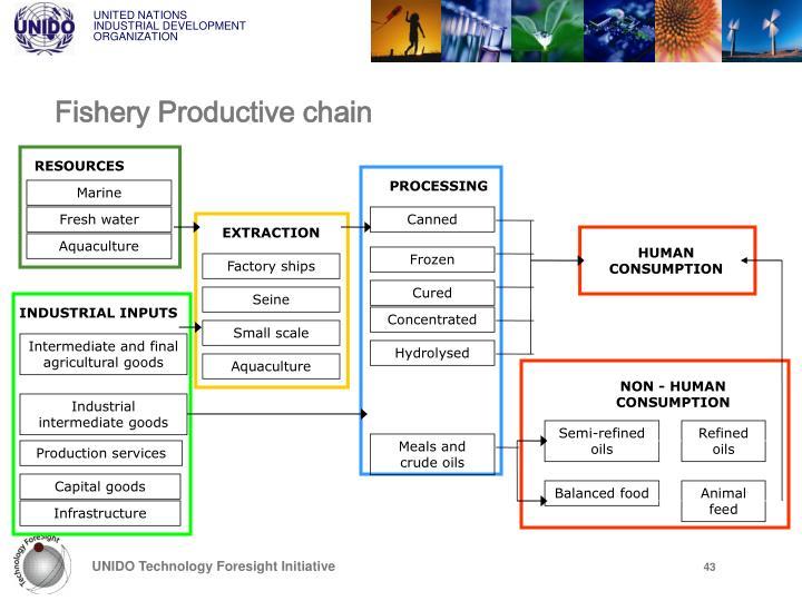 Fishery Productive chain