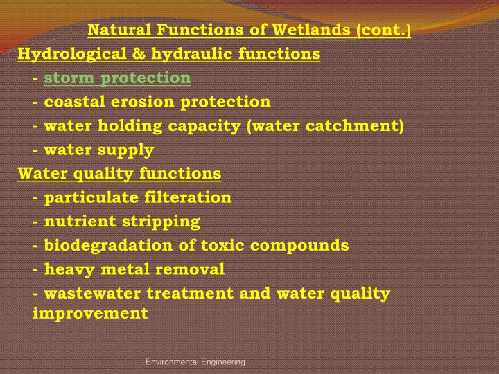 Natural Functions of Wetlands (cont.)