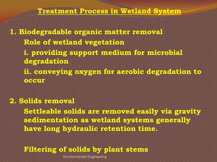 Treatment Process in Wetland System