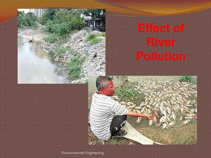 Effect of River Pollution