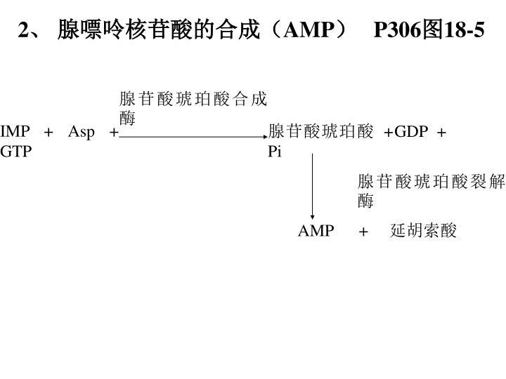 IMP + Asp + GTP