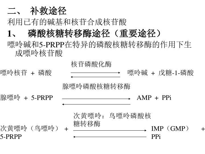 核苷磷酸化酶