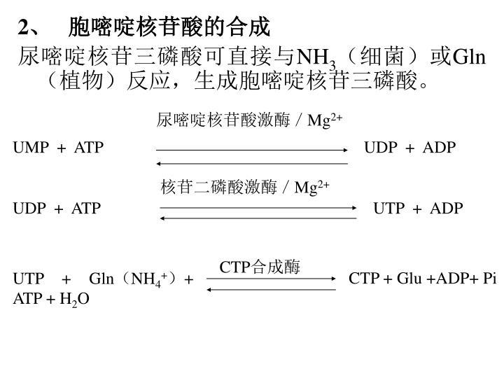 尿嘧啶核苷酸激酶/