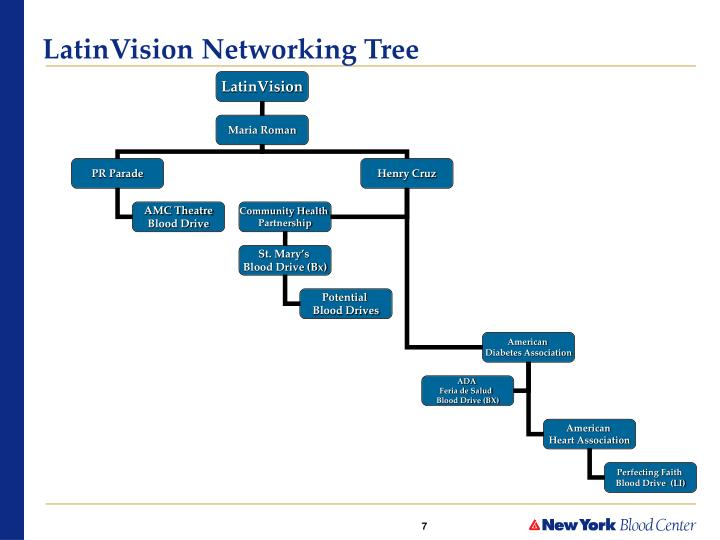 LatinVision Networking Tree