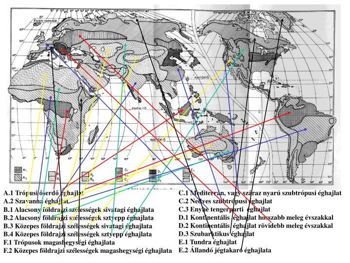 A.1 Trópusi őserdő éghajlat