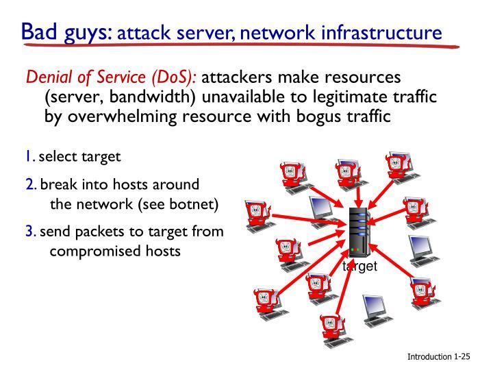 Denial of Service (DoS):
