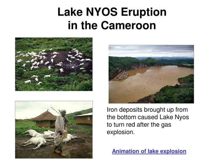Iron deposits brought up from the bottom caused Lake Nyos to turn red after the gas explosion.
