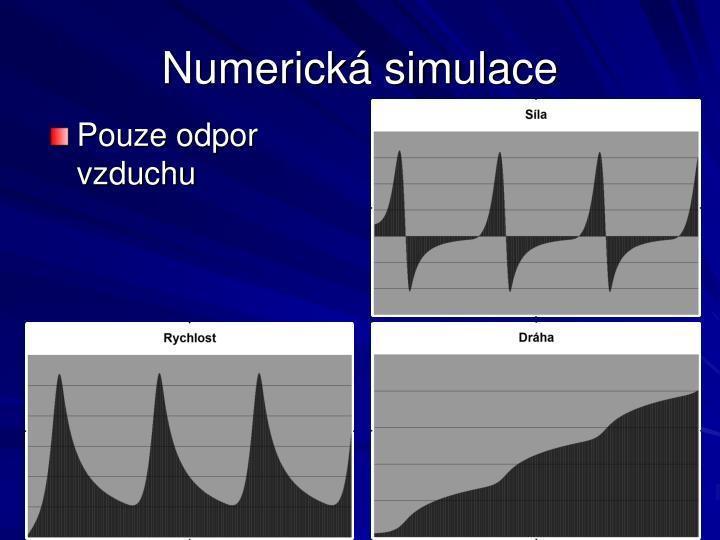 Numerická simulace