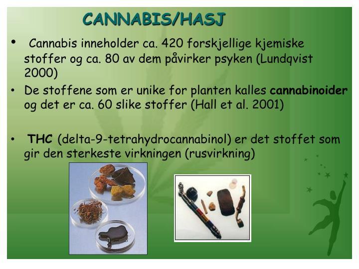 CANNABIS/HASJ