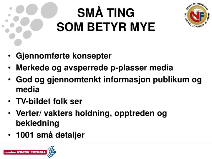 SMÅ TING