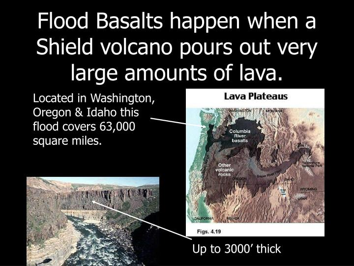 Flood Basalts happen when a Shield volcano pours out very large amounts of lava.