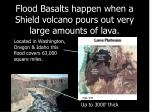 flood basalts happen when a shield volcano pours out very large amounts of lava