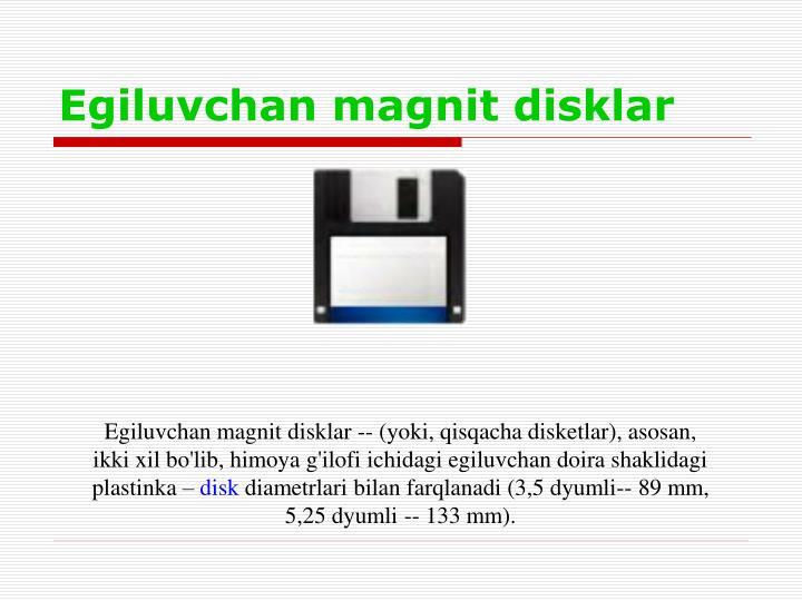 Egiluvchan magnit disklar