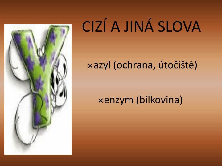 CIZÍ A JINÁ SLOVA