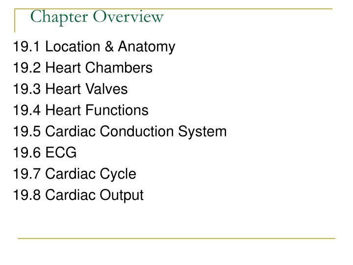 cardiovascular system lecture notes pdf