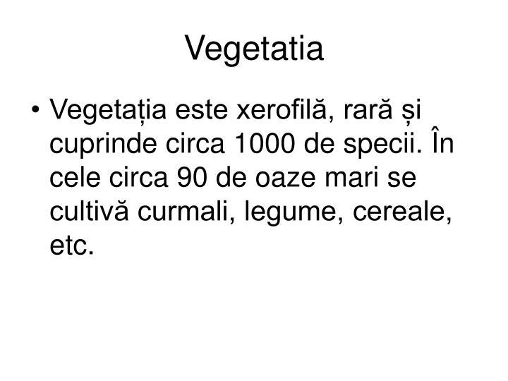 Vegetatia