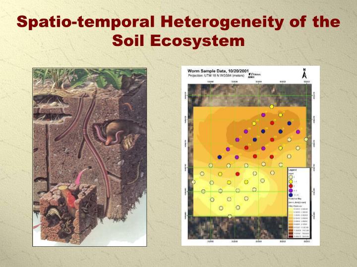 Spatio-temporal Heterogeneity of the Soil Ecosystem