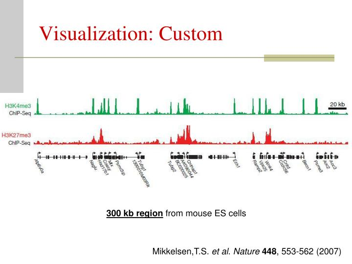 Visualization: Custom