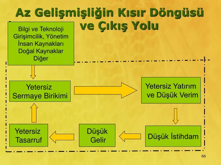Bilgi ve Teknoloji