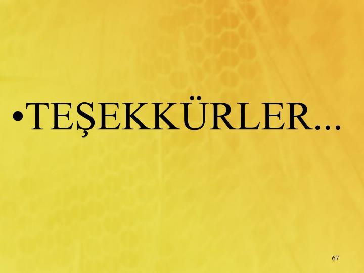 TEEKKRLER...