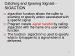 catching and ignoring signals sigaction