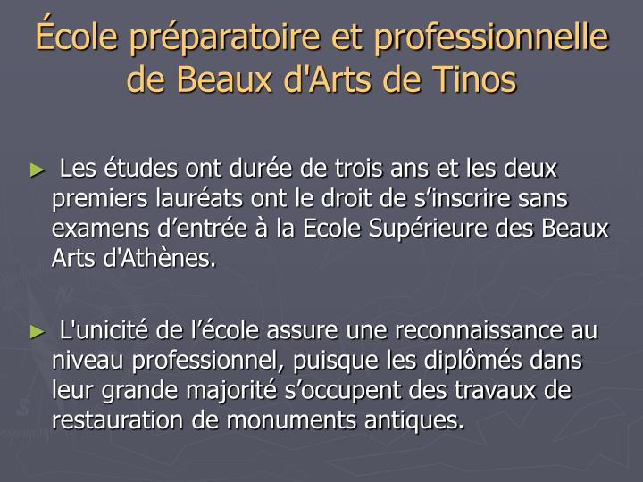 École préparatoire et professionnelle de Beaux d'Arts de Tinos