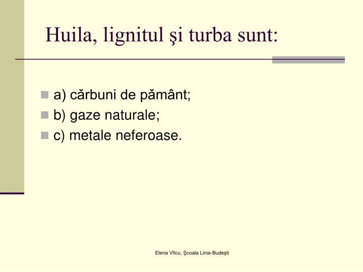 Huila, lignitul şi turba sunt: