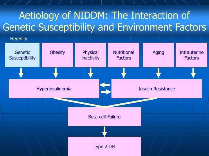 Aetiology of NIDDM: The Interaction of Genetic Susceptibility and Environment Factors