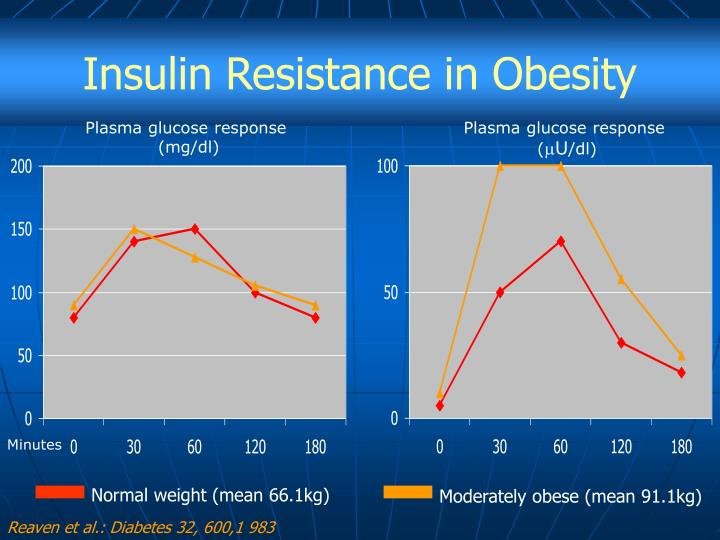 Insulin Resistance in Obesity