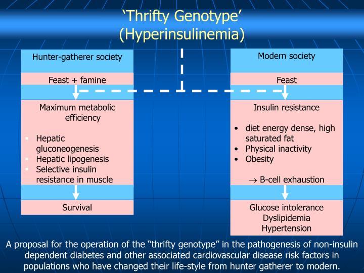 'Thrifty Genotype'