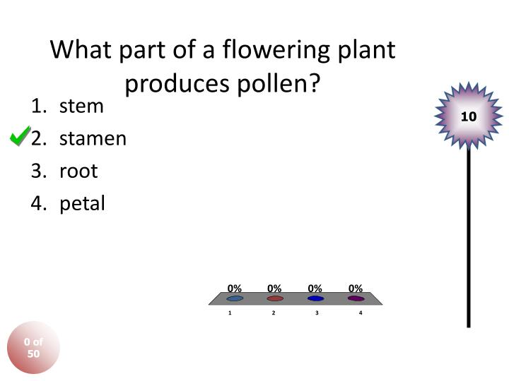 What part of a flowering plant produces pollen?