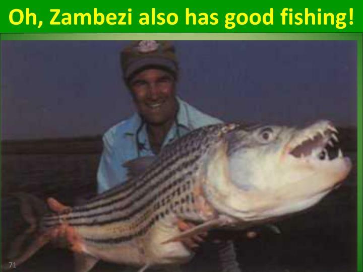 Oh, Zambezi also has good fishing!