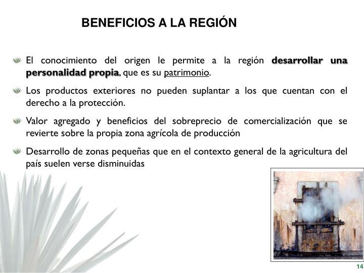 BENEFICIOS A LA REGIÓN