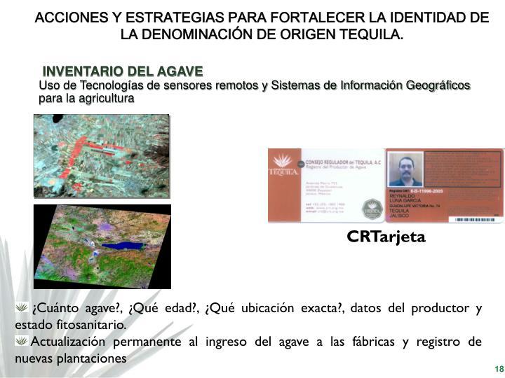ACCIONES Y ESTRATEGIAS PARA FORTALECER LA IDENTIDAD DE LA DENOMINACIÓN DE ORIGEN TEQUILA.