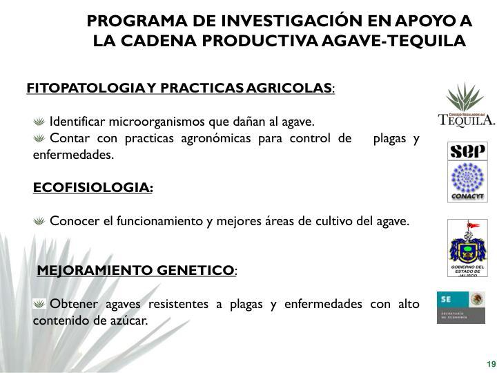 PROGRAMA DE INVESTIGACIÓN EN APOYO A LA CADENA PRODUCTIVA AGAVE-TEQUILA