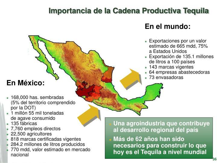 Importancia de la Cadena Productiva Tequila
