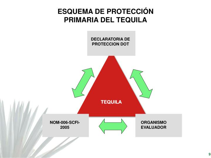 ESQUEMA DE PROTECCIÓN PRIMARIA DEL TEQUILA