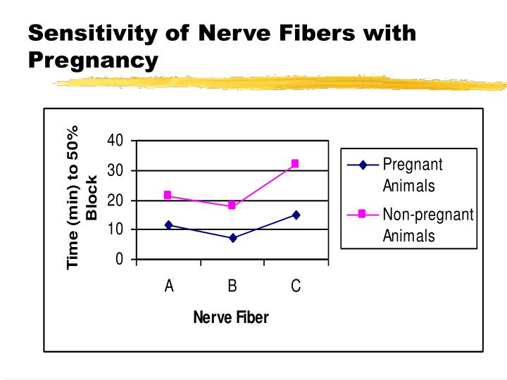 Sensitivity of Nerve Fibers with Pregnancy