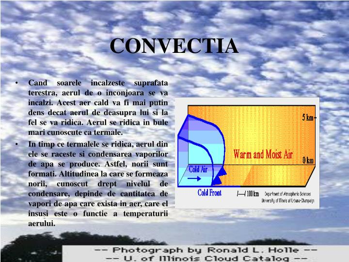 CONVECTIA