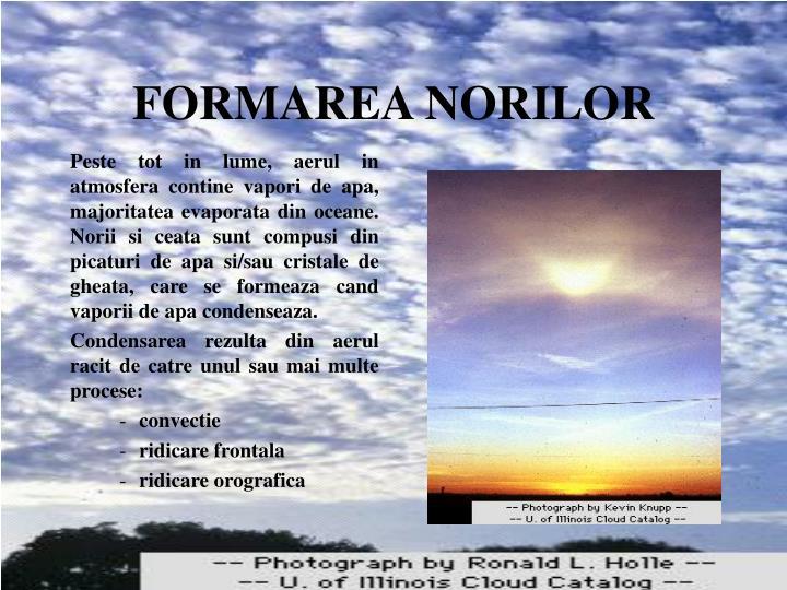 FORMAREA NORILOR
