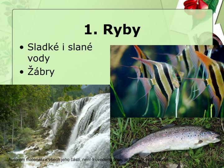 1. Ryby