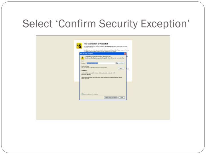 Select 'Confirm Security Exception'