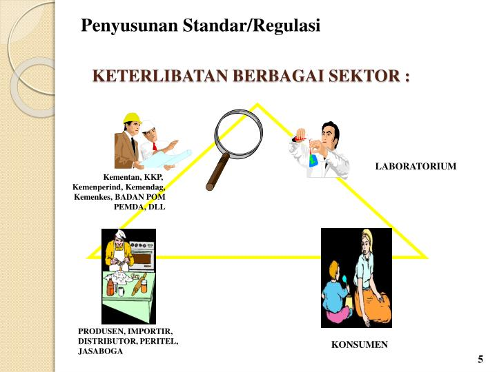 Penyusunan Standar/Regulasi