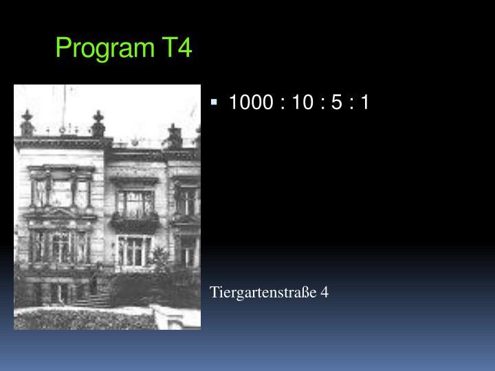 Program T4