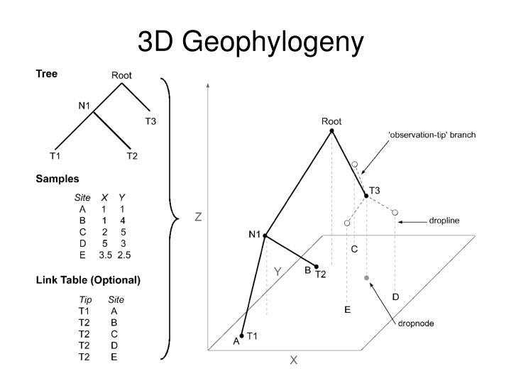 3D Geophylogeny