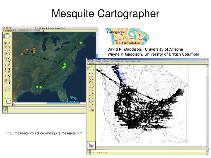 Mesquite Cartographer
